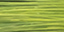 """""""Gamma"""" Леска для бисеропл. нейлон DF-03 цв. d 0.3 мм 100 м ±5 м №27 зеленый"""