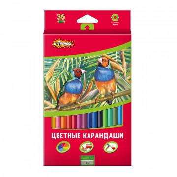 Карандаши цветные 36цв 6-гран №1School ColorPics + точилка
