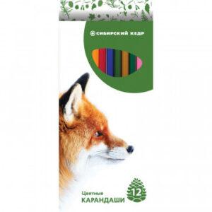 Карандаши цветные 12цв 6-гран Сибирский Кедр, Звери