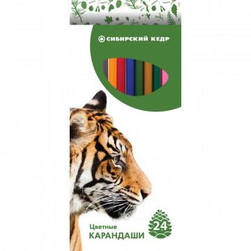 Карандаши цветные 24цв 6-гран Сибирский Кедр, Звери
