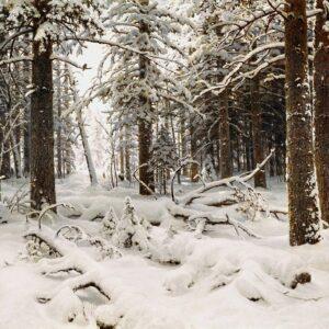 Иван Иванович Шишки, Зима