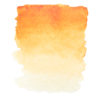 Индийская золотистая акварель 244 Белые ночи кювета 2,5 мл