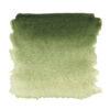 Зеленая светлая акварель 717 Белые ночи кювета 2,5 мл